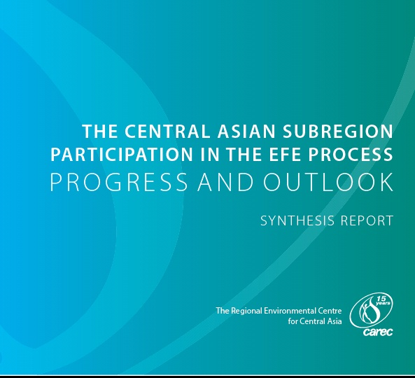 THE CENTRAL ASIAN SUBREGION PARTICIPATION IN THE EFE PROCESS